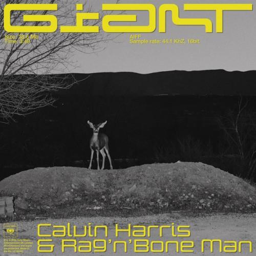 CALVIN HARRIS & RAG'N'BONE MAN: Giant