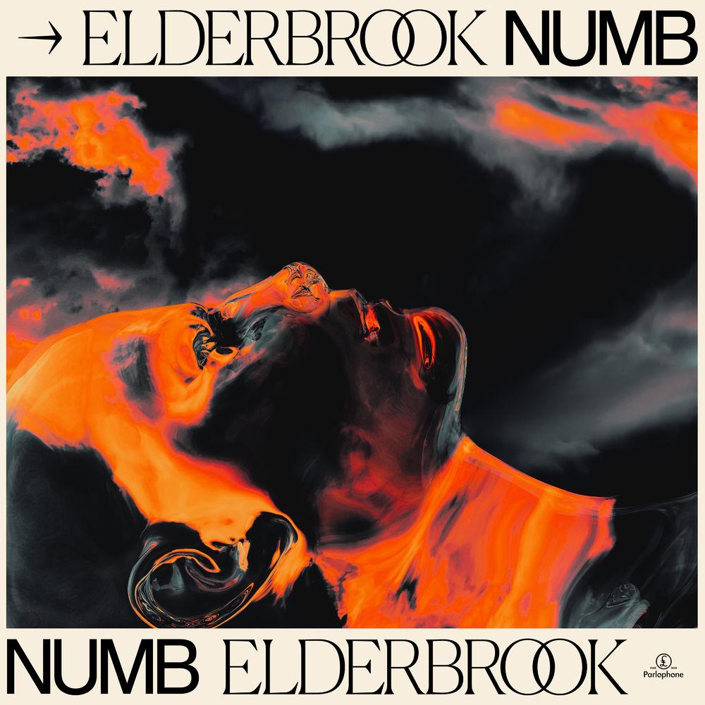 ELDERBROOK: Numb
