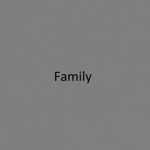 FANCY DRESS PARTY: Family