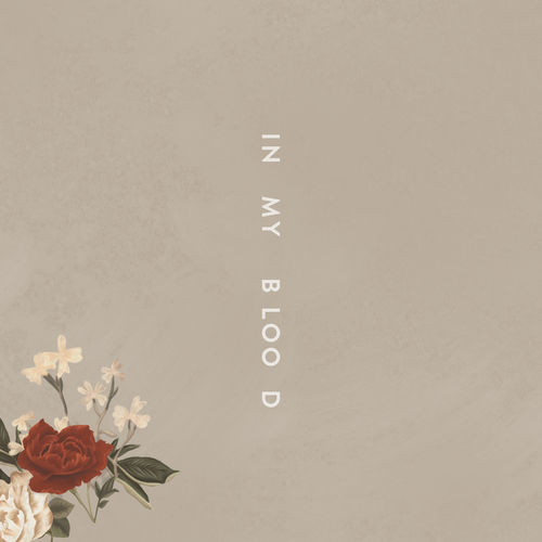 SHAWN MENDES: In My Blood