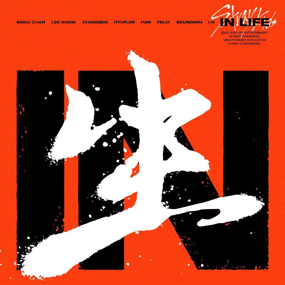 STRAY KIDS: Album Vol. 1 Repackage: In Life