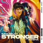 SAM FELDT feat. KESHA: Stronger