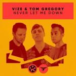 VIZE & TOM GREGORY: Never Let Me Down